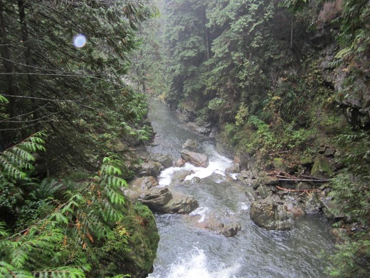 Nature walk North Vancouver
