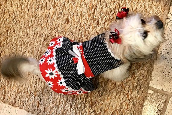 Dog Dresses, Dog Clothing, Pet Clothes, Dog Outfits, Dog Apparel, Red Daisy Dog Dress, Dog Harness, Small Dog Harness