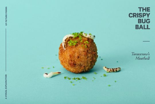 A 3D printed meatball with maggots.