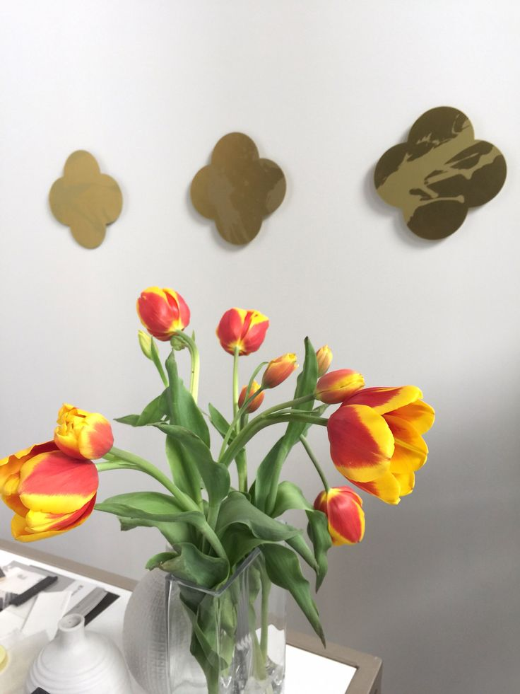 Sexy Tulips. Sitting pretty in my studio. ScX