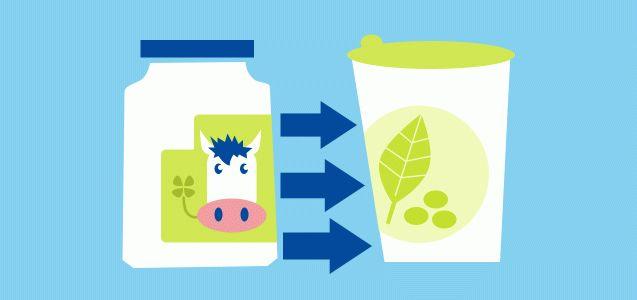 Kaufberatung: milchfreie Joghurt-Alternativen | Utopia.de