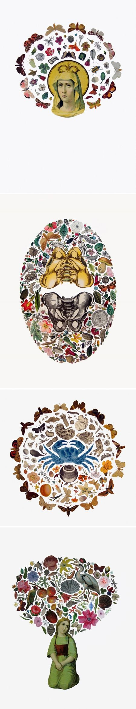 adrienne slane - found image collage