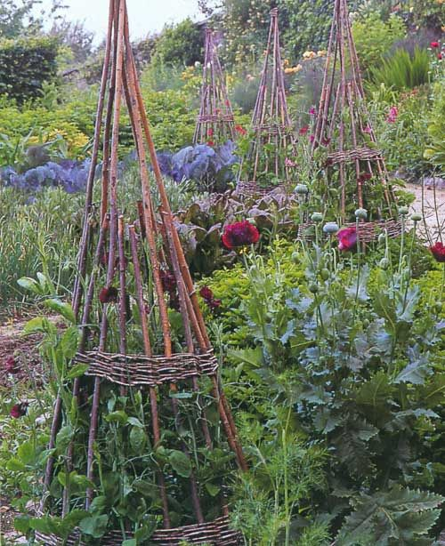 Garden from the book 'Smith & Hawken Garden Structures' by Linda Joan Smith. Has it all. Structure, color, meandering path, whimsy, repeated natural element (bean poles)