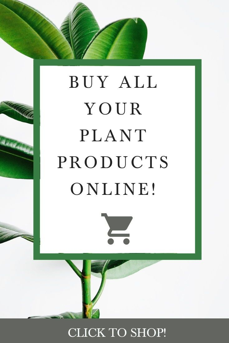 Did You Know You Can Shop For All Of Your Gardening Needs Online At The O Toole S Garden Center Amazon Storefront It S True Click Garden Center Garden Plants