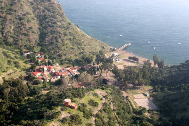 Catalina island marine institute toyon bay i have been for Catalina bay