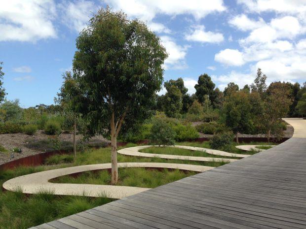 the 1498 best australian native gardens images on pinterest