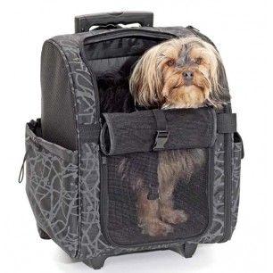 Trolley sur roulettes de luxe panier de transport pour chien et chat