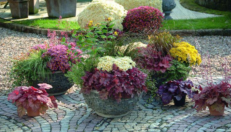 Herbstbepflanzung Kübel Pflanzen Herbst Garten