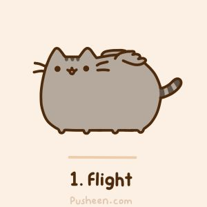 Flying Pusheen