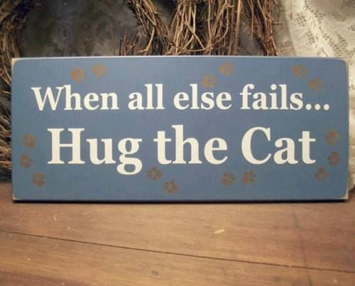 when all else fails...Hug the Cat....but do not let him out no matter what he says.