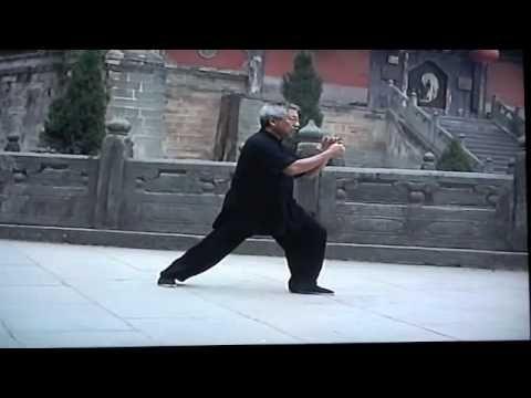 Yang Style Tai Chi  108 Form     3 of 3