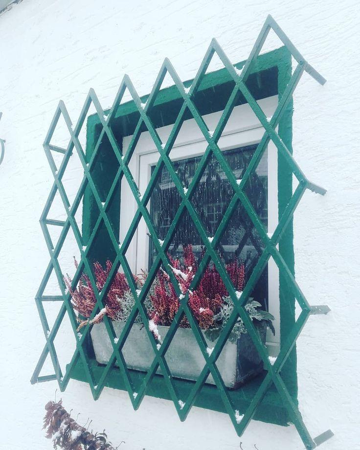 #poeringsmetallbau #winter #Winterzeit #sicherdrinnensein #moosgrün #baustahl #fenstergitter #acier #metallbau #metalwork #grille #gitter #grid #ferro #welding #raute #einbruchlohntsichnicht #einbruchschutz #save #duplexbeschichtung #wig #tig
