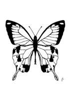 You give me butterflies 2