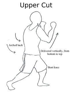 Kung Fu Wing Chun Tai Chi Swords