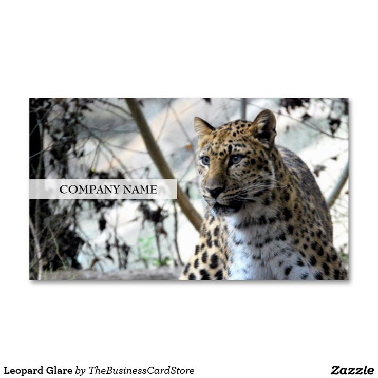 304 best ANIMAL AND WILDLIFE BUSINESS CARDS FROM THE BUSINESS CARD ...