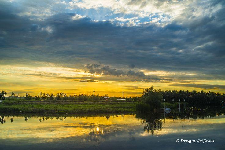 Sunlight in Delta Neajlovului