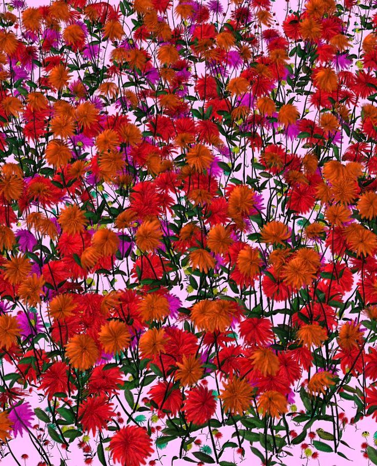 #aysegulsuter #videoart #animation #flowers