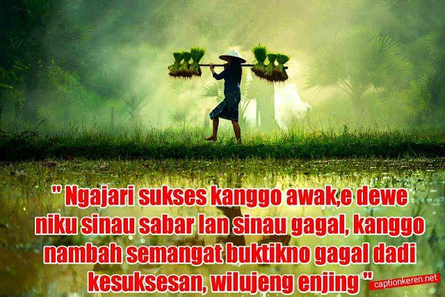 Kata Kata Mutiara Selamat Pagi Bahasa Jawa In 2020 Movie Posters
