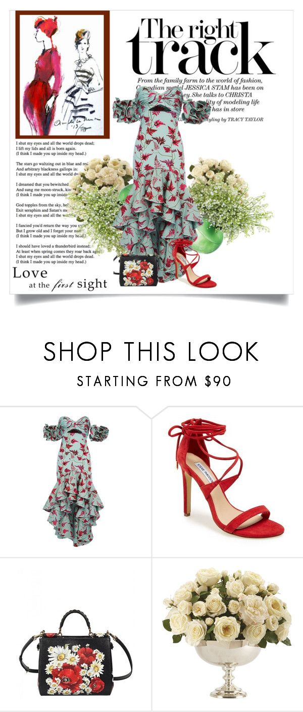 """Johanna Ortiz dress"" by any-dazaperez ❤ liked on Polyvore featuring Johanna Ortiz, Steve Madden, Dolce&Gabbana and Ethan Allen"