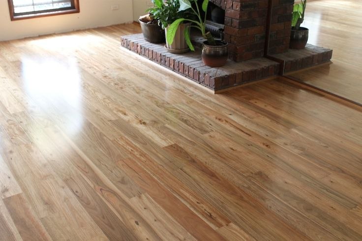 Pacific Spotted Gum Hardwood Timber Flooring www.zealseaflooring.com Robina, Gold Coast, QLD, Australia   Zealsea