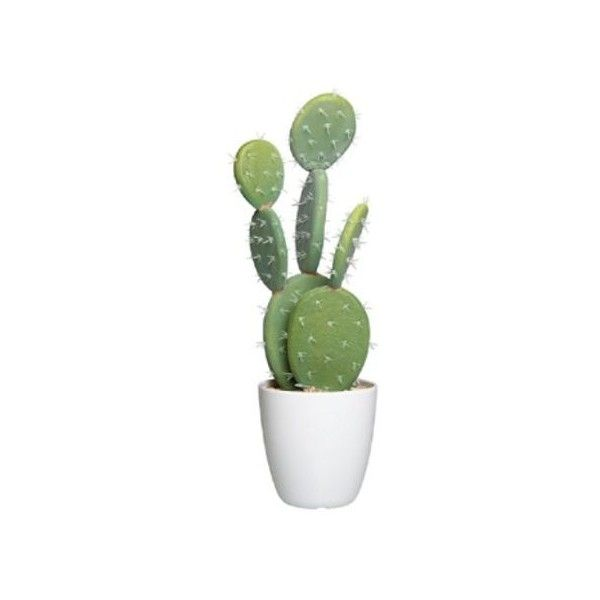 At Home Home Decor Part - 39: England At Home Santa Cruz Artificial Cactus ($43) ? Liked On Polyvore  Featuring Home