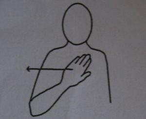 """makaton sign for """"no"""""""