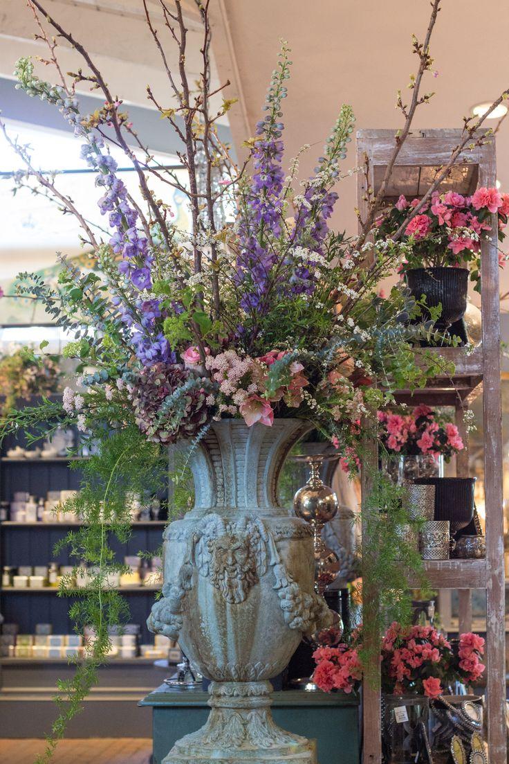 Experience Roger's Gardens' Spring Celebration 2016 httpvh://youtu.be/fK-wiPwty5g