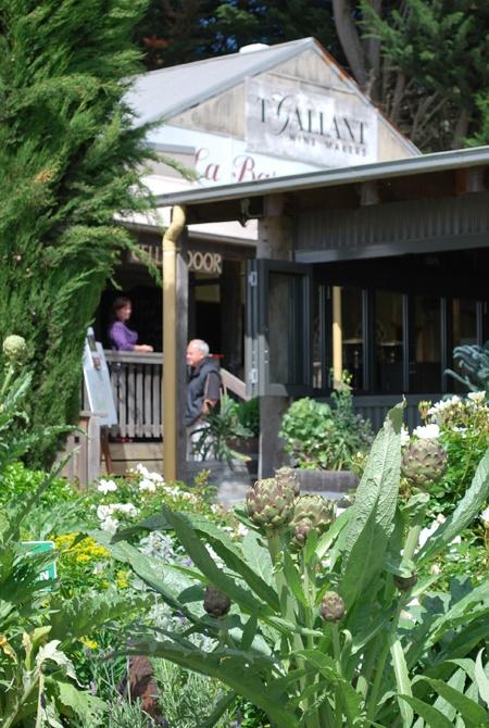Mornington Peninsula_Vineyards and Wineries_TGallant, Victoria, Australia.