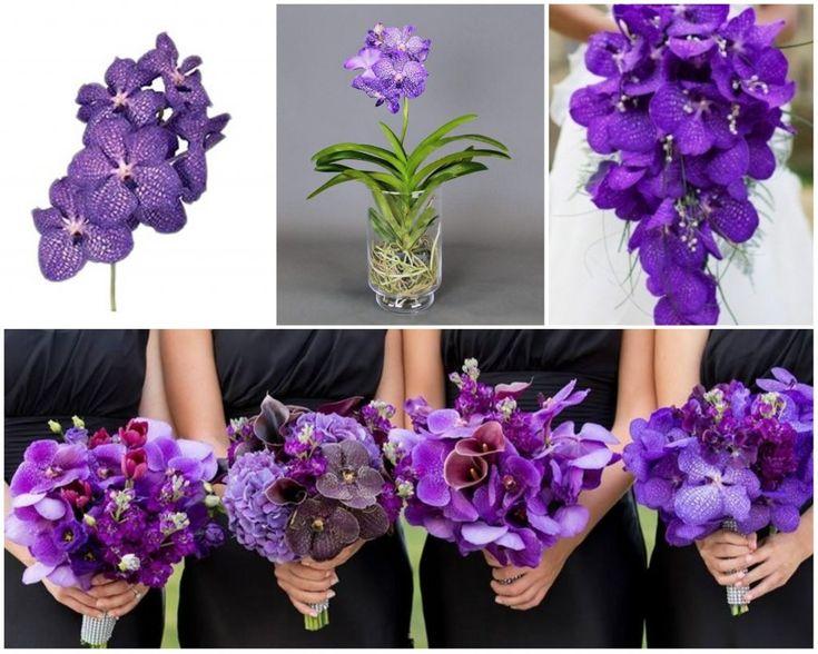 orhidee vanda mov in buchete de mireasa, nasa si domnisoare de onoare