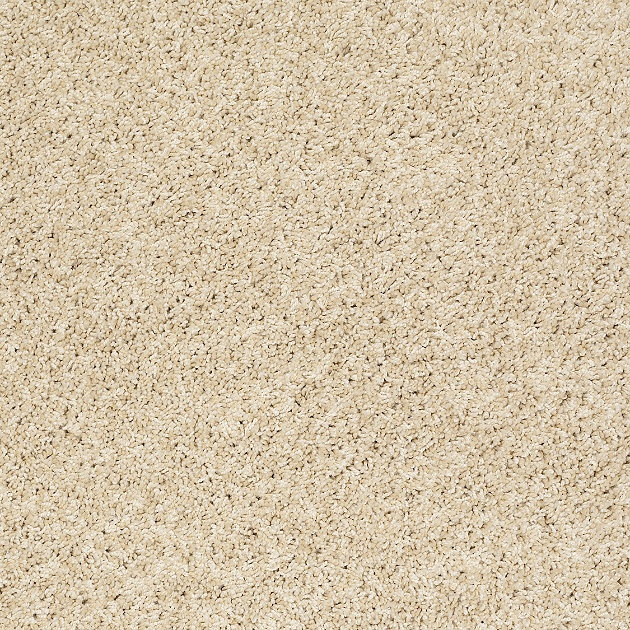 Flooring And Carpeting Floorcovering