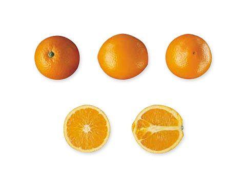 Naranjas Navelate. Disponible en Cajas de 5, 10 y 15 Kg