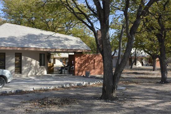 etosha national park halali camp - Namibie