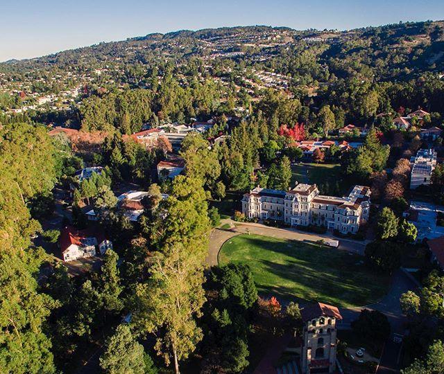 A shot above Mills Hall and the fabulous greenery of Mills College in East Oakland. #oakland #oaklandloveit #exploreoak #oaklandish #millscollege #mills #greenery