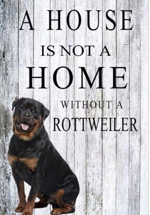#Rottweiler truth