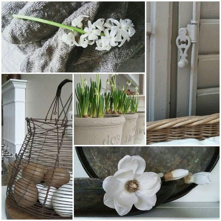 Maart roert zijn staart. De lente komt steeds dichterbij en daar hebben we zin in. Ik ga vandaag leuke winkeltjes met mijn moeder bezoeken. Zin in! #maart #collage #shoppen #spring #lente #home #instahome #hyacint #magnolia #wittedruifjes #landelijk #sober #wit #whiteliving