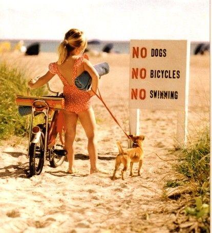 awwwwwwww mannnnnnnnnnBicycles, Little Girls, Go Girls, Dogs, At The Beach, Funny, Life A Beach, Kids, The Rules