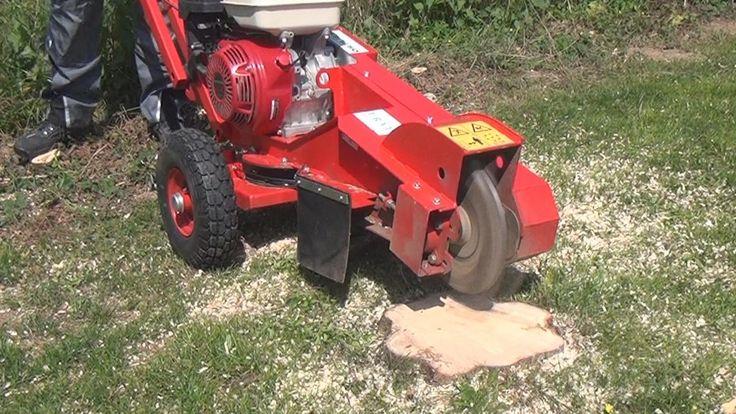 Mit einer Baumstumpffräse kann man einen störenden Baumstumpf schnell entfernen. (Quelle: diybook)