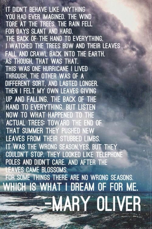 Mary Oliver - Hurricane | Hmm, 2016 was the year M's name showed up in the hurricane names. Pretty perfect, considering.