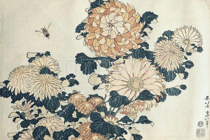 Chrysanthemums, Katsushika Hokusai - Fotobehang & Behang - Photowall