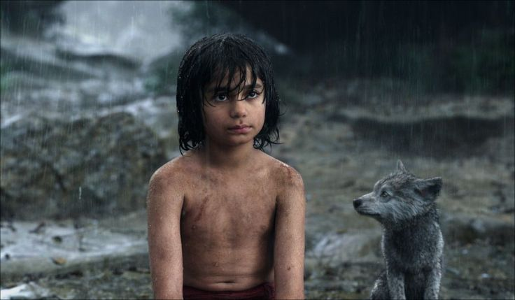 Watch The Jungle Book 2016 Full Movie >> http://fullonlinefree.putlockermovie.net/?id=0061852 << #Onlinefree #fullmovie #onlinefreemovies Watch The Jungle Book Full Movie Online Stream UltraHD Where Can I Watch The Jungle Book Online The Jungle Book Full Movie Streaming Watch The Jungle Book Online Youtube Streaming Here > http://fullonlinefree.putlockermovie.net/?id=0061852