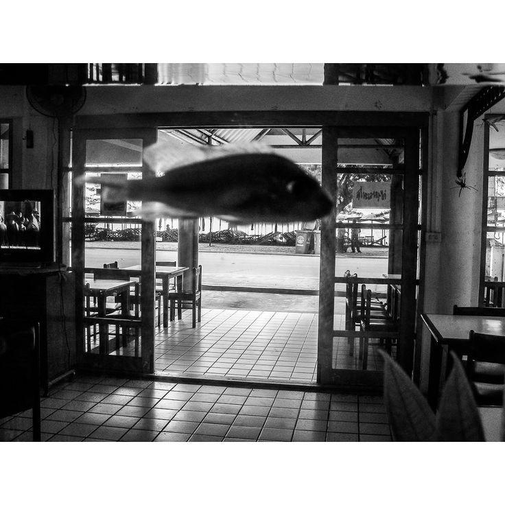 #blackandwhite #photography #documentary #paullukin #bnw #photooftheday#followme #bw #monochrome #instablackandwhite #insta_bw #bw_photooftheday #bestoftheday #Instaphoto #instagram #Instapic #solitude #asia#thailand #rayong