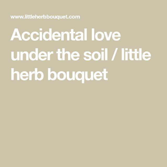 Accidental love under the soil / little herb bouquet
