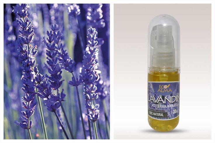 Aceite esencial de Lavandín. Obtenido de plantas que sólo reciben sol y agua. Procesos estrictamente manuales.