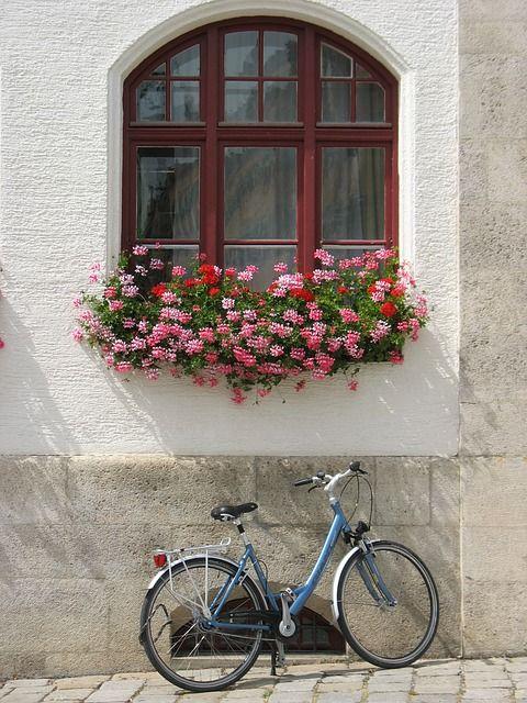 Pixabayの無料画像 - ドイツ, 自転車, ウィンドウ, ドイツの街, 外観, バイエルン