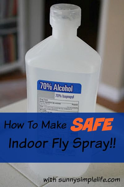 How to make your own safe indoor fly spray. Best Homemade Indoor bug spray