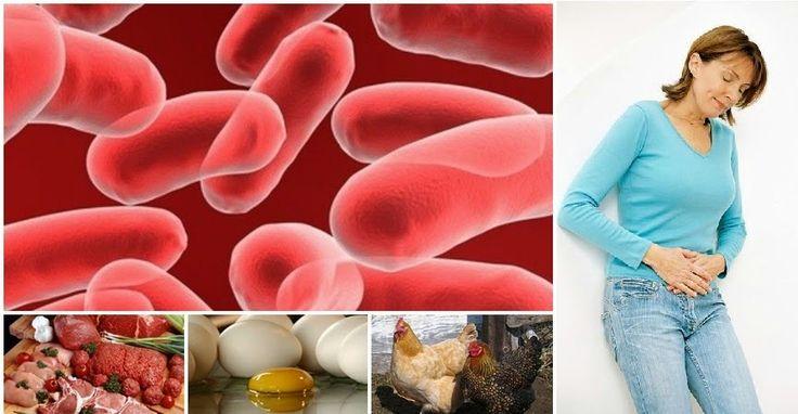 Protégete de Salmonella y E. Coli Naturalmente - Vida Lúcida