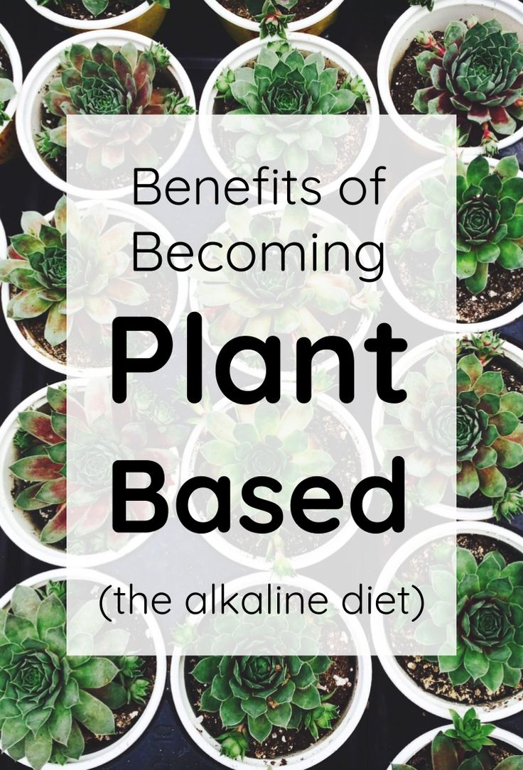 The food we consume shapes who we are on the inside and out. When you understand the chemistry of food, and the acid-alkaline balance you are able to...