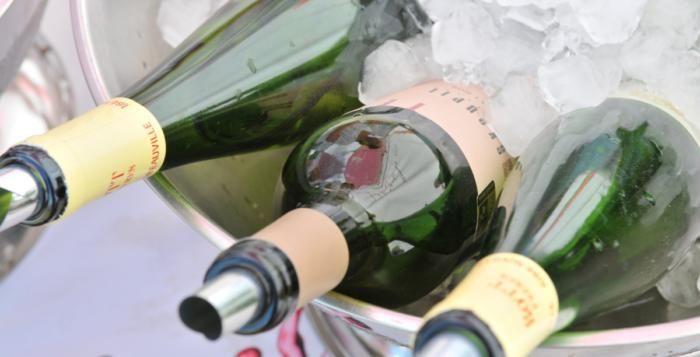 Snoubení fantastického jídla s jedinečnými víny. To bude Bosch Fresh festival v Plzni