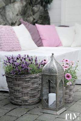 Pink and violet accents on terrace from FruFly