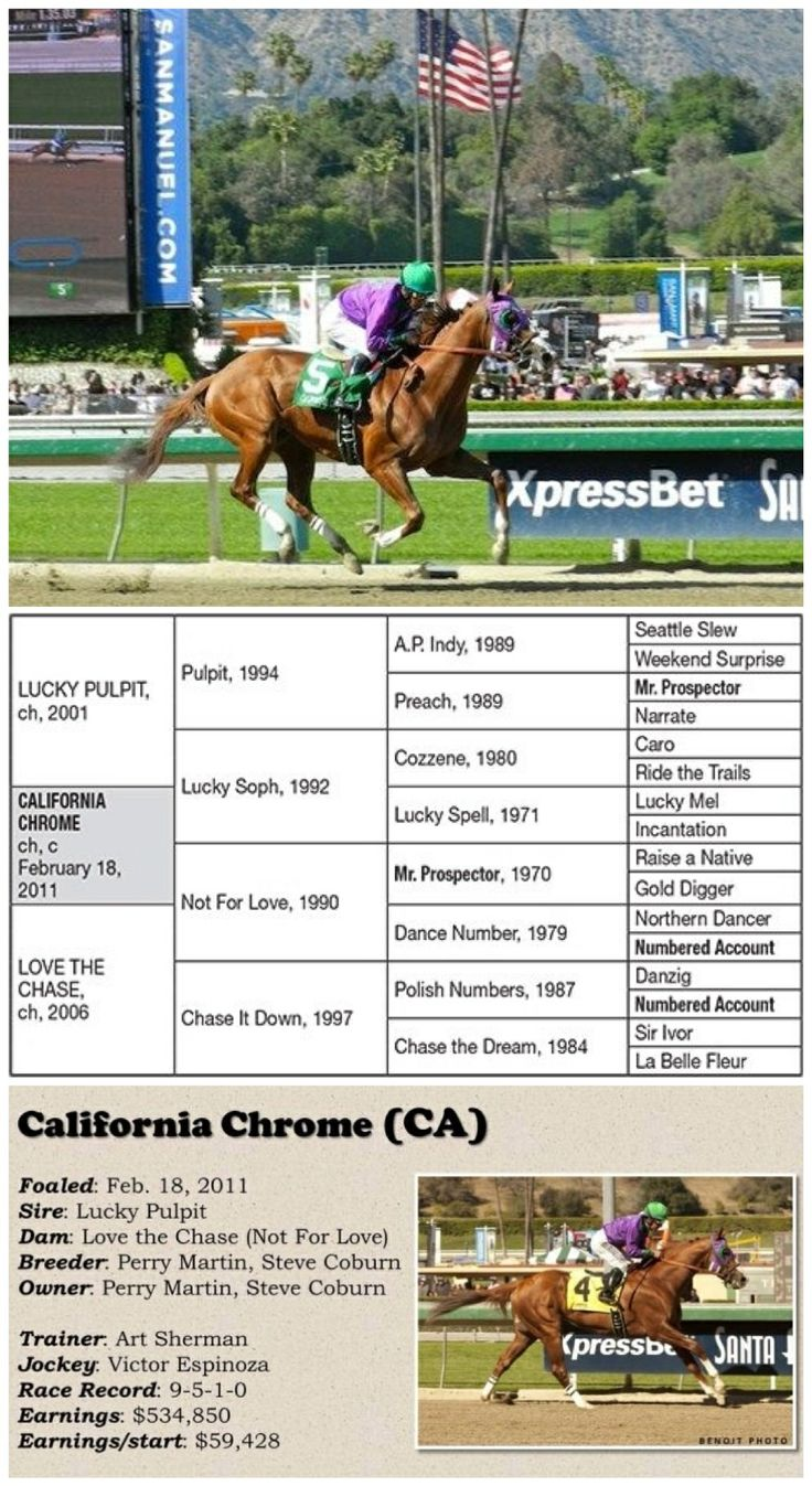 81 Best California Chrome People S Hero Images On Pinterest